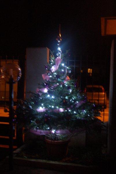 Le decorazioni di Natale di Melania