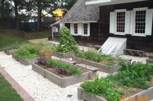 kitchen-garden2