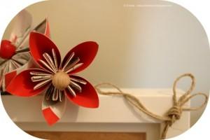 IMG_8242 fiore rosso ridimensionato