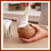 Come trasformare una noce di cocco in un vaso: il progetto passo passo