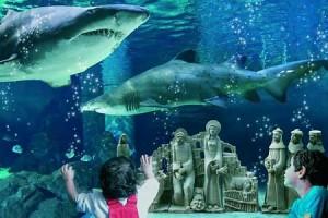 presepe-le-navi-acquario-cattolica