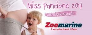 miss pancione