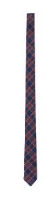 Cravatta check Prezzo al pubblico: 29,90 euro