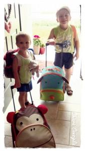Zoo Pack: i nostri compagni di viaggio preferiti #piccifirenze