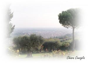 Un pomeriggio tra le colline veronesi