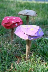 funghi di carta