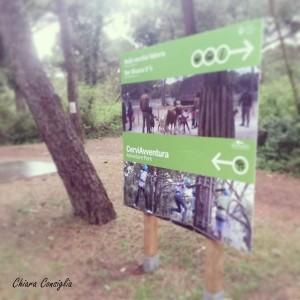 parco avventura Cervia