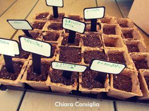 Quercetti Green: kit per piccoli giardinieri