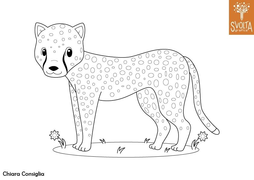 Disegni da colorare gli animali della savana for Disegni della roma da colorare