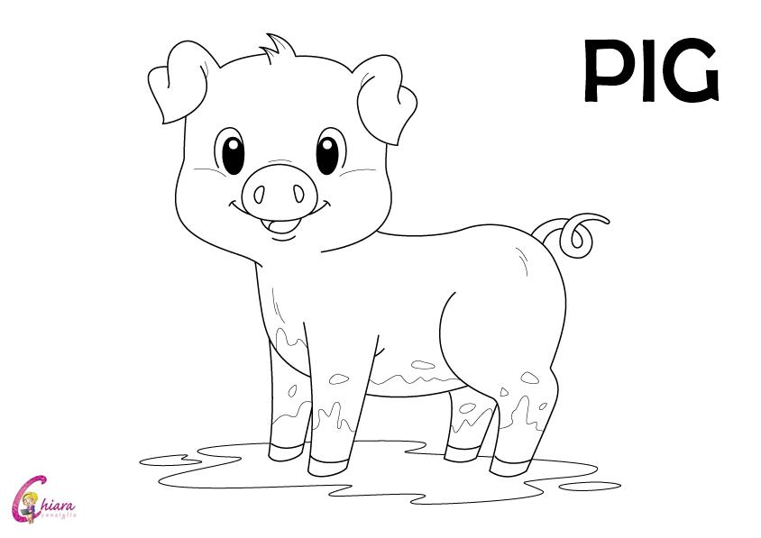 Flashcards gli animali della fattoria - Immagini di animali dello zoo per bambini ...