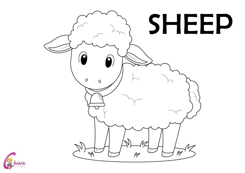 Flashcards gli animali della fattoria for Fattoria immagini da colorare