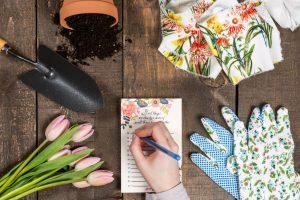 Le regole base per progettare il giardino dei sogni