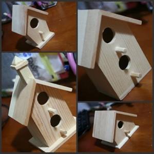Birdhouse before