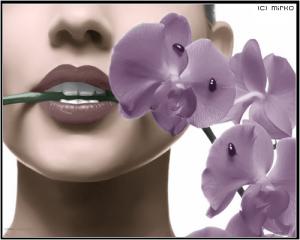 Come vanno concimate le orchidee