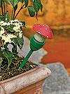 funghetto-per-le-piante.jpg